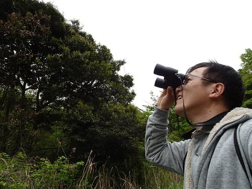 横浜自然観察の森で野鳥観察 双眼鏡