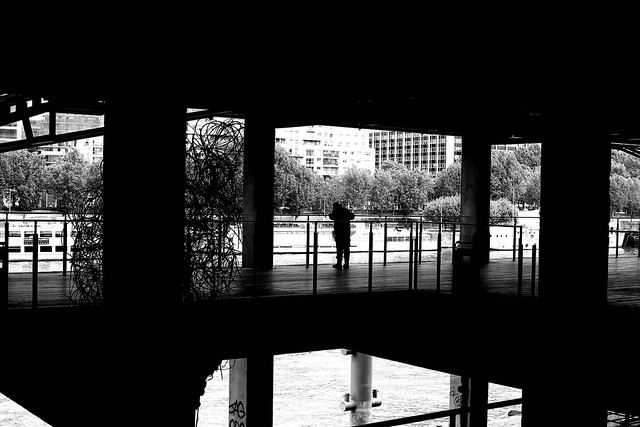 Looking at the Seine