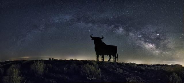 60 años hace que la silueta de un toro de lidia vigila las carreteras españolas. Con sus 14 metros de altura impone cuando te lo ves de cerca.