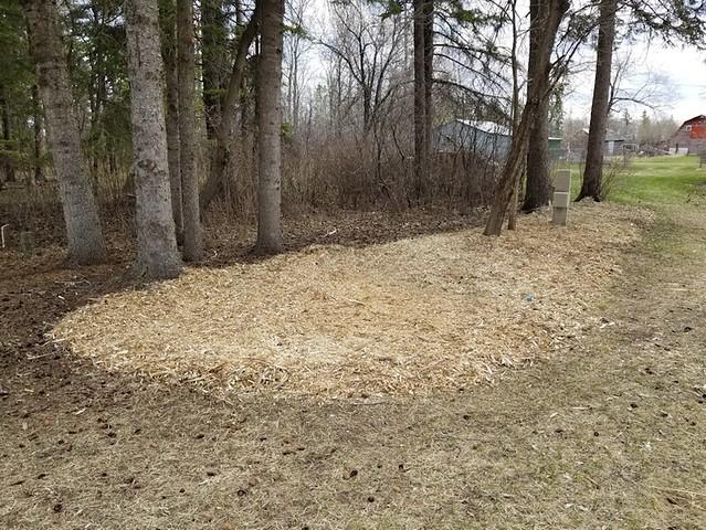 20190511.cleanup.mulch.1
