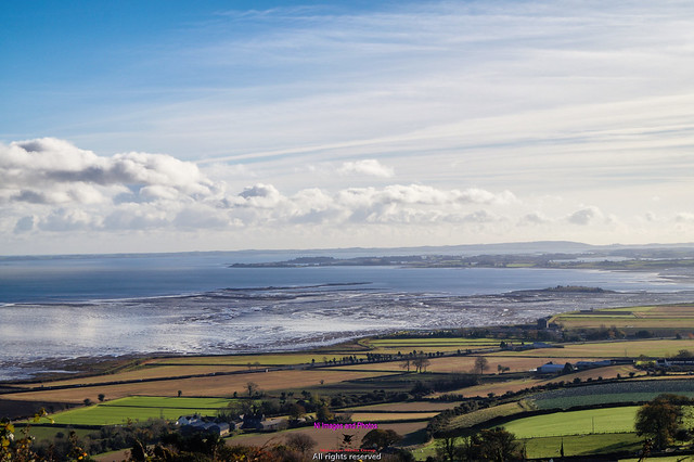 Looking down from Scrabo tower to Strangford lough