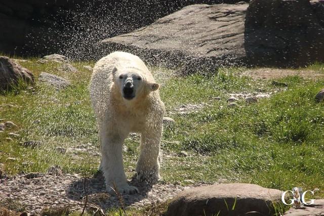 Besuch Zoo Rostock 22.+23.04.2019157