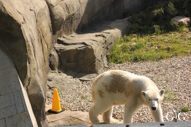 Besuch Zoo Rostock 22.+23.04.2019154