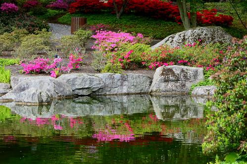 hamburg plantenunblomen park japanischer garten japanesegarden teich pond wasser water grüngolden greengolden landschaft landscape natur nature ivlys