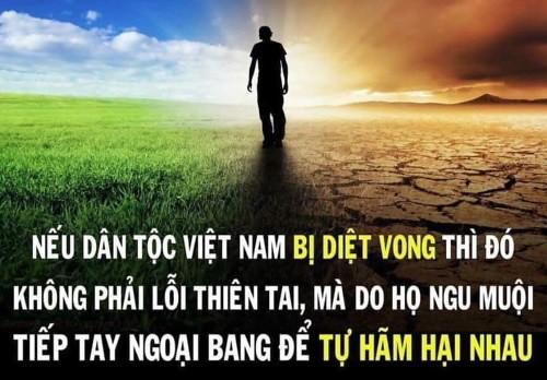 nguoi_viet_thetham01