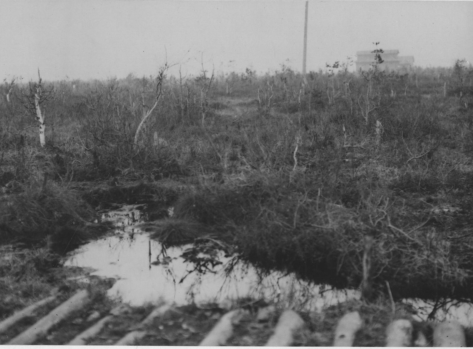 07. Типичный вид местности, где приходится сражаться с большевиками