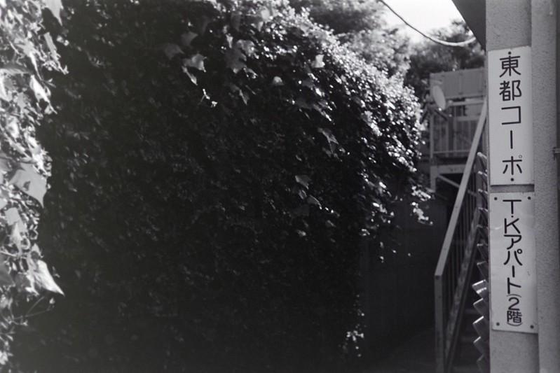 002LeicaM2 Summaron 35mm f35 Kodak 400TX池袋二丁目