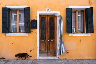 Yellow spirits | by alvytsk