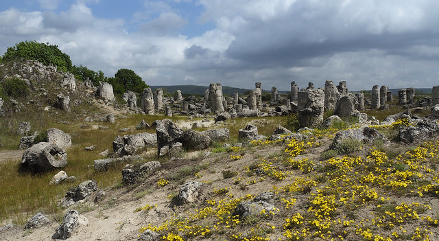 The Stone Forest (Pobiti Kamani), Bulgaria
