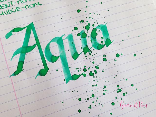 Toucan Aqua Ink Review 6