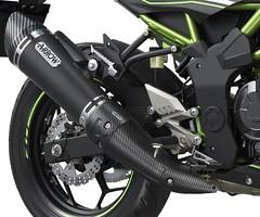 Kawasaki Ninja 125 Performance 2019 - 5