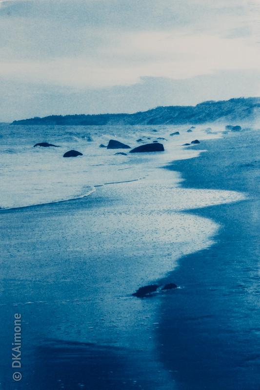 Lucy Vincent Beach — Cyanotype