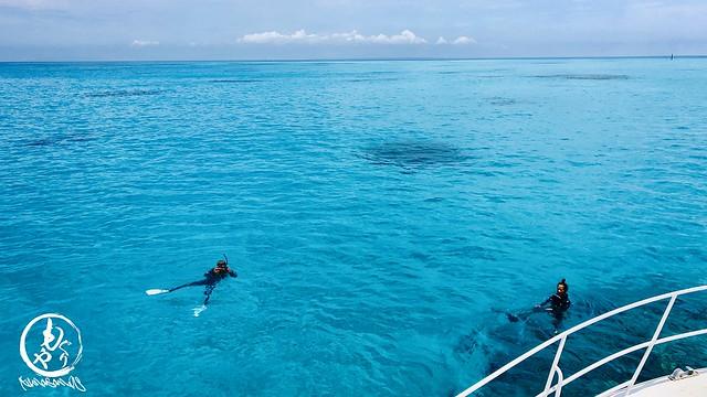 黒島テラピーで水面休息♪