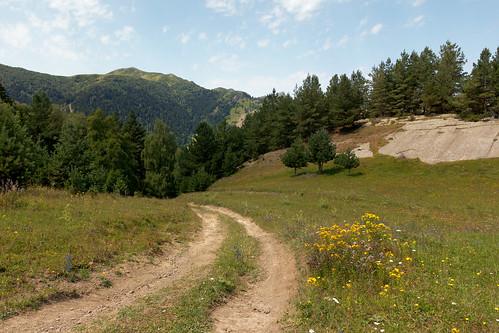 грузия eos60d sigmaaf1770284dcmacrooshsm mountains kavkaz georgia