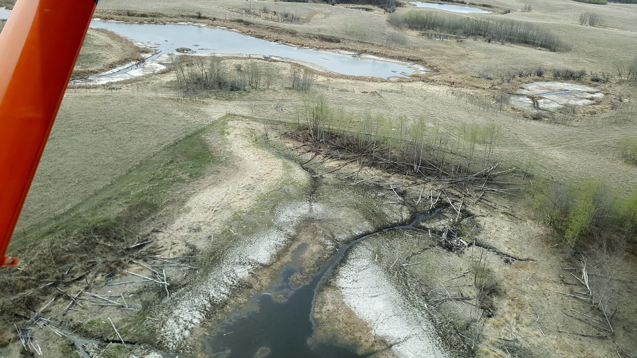 Parkland wetlands are looking dry near Seer and Day Bird Lake, SK. Photo Credit: Jeff Drahota, USFWS