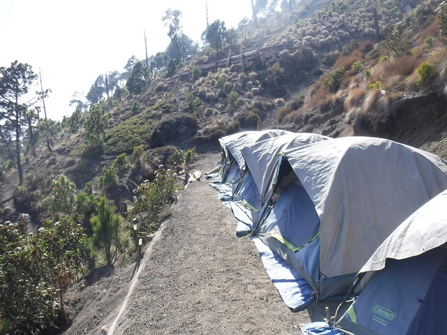 Acatenango Base Camp