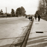 November 1942 - Looking along the Shoukry Al-Qouwatly road towards the old city of Damascus, Syria