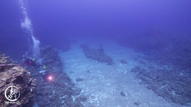 潜水艦に見える岩