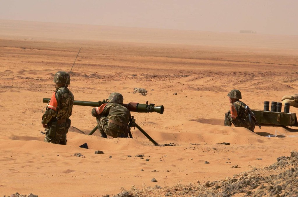 القوات البرية الجزائرية  - صفحة 51 33991836568_d9282f1cf2_b