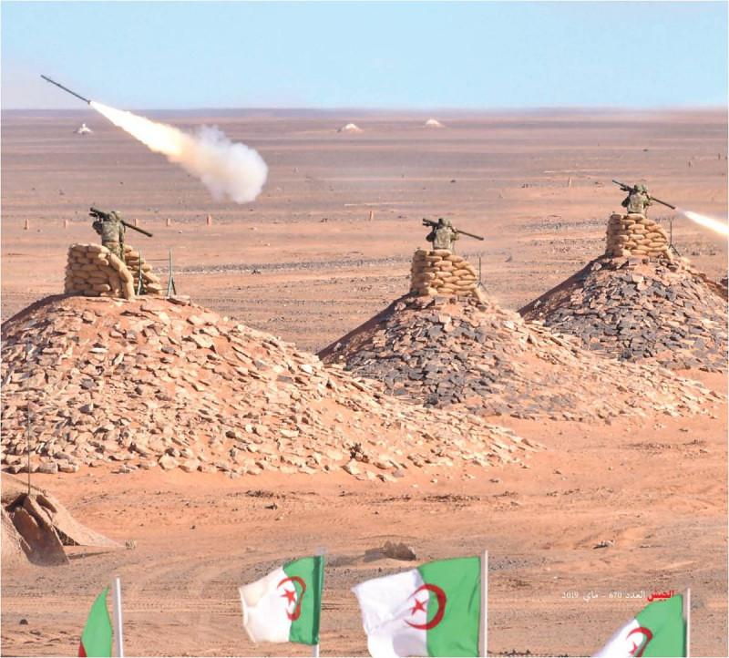 القوات البرية الجزائرية  - صفحة 51 33991838938_132672c8a6_b