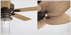 hive // bakers ceiling fan + tropical palm ceiling fan | fifty linden friday