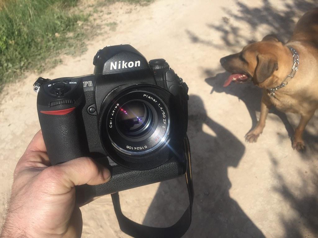 Nikon F6 + Planar 50 1.4