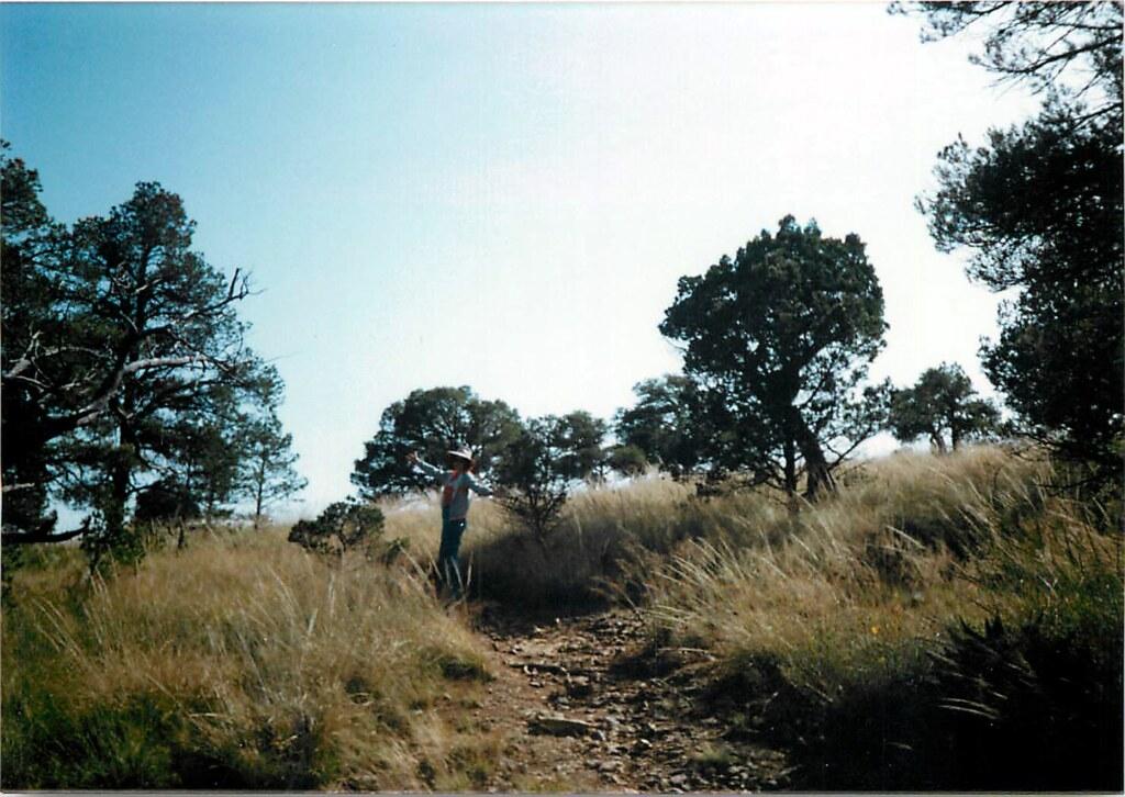 Big Bend National Park - 1991