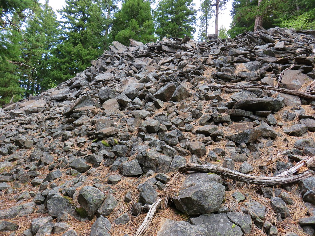 Talus field along the Dog River Trail