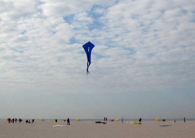 03 Blue Kite Over the Beach