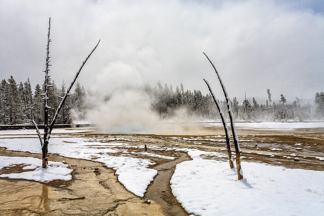 Celestine Pool, Yellowstone National Park (USA)