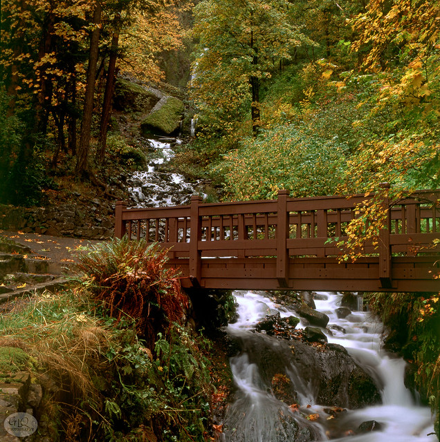 Wahkeena Falls, October 2000