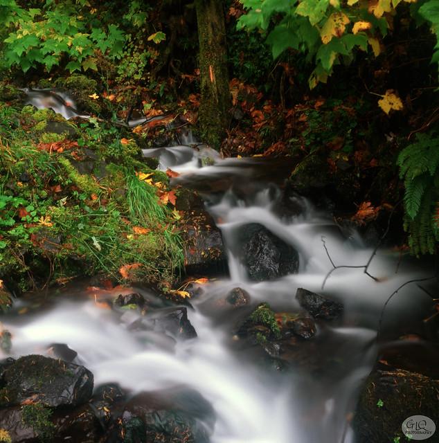 Wahkeena Falls # 4