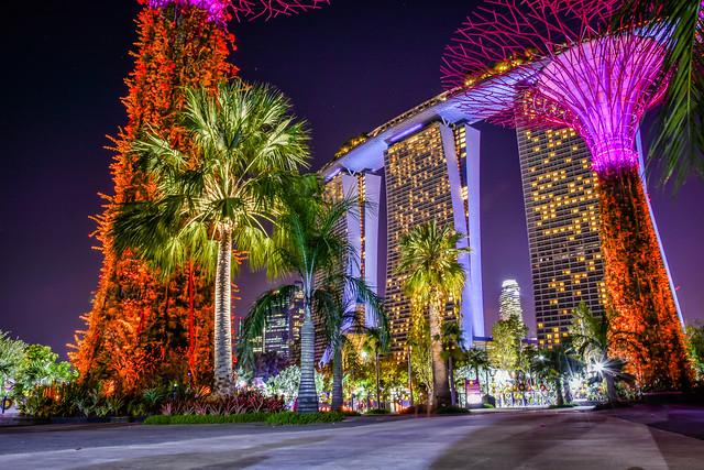 Singapore Marina bay - Gardens by the bay night