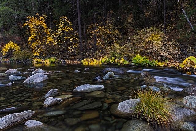 Autumn Colors North Yuba River