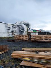 Reykjavik murals