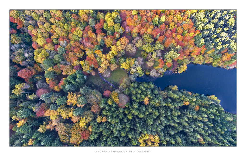 Drone's eye view over Wiltshire