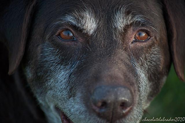 Reflected in her eyes.jpg