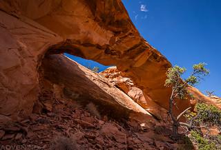 Canyon Arch   by IntrepidXJ
