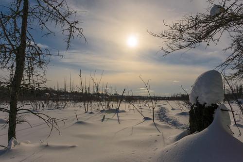 canada moncton newbrunswick shawnharquail travel shawnharquailcom snow winter