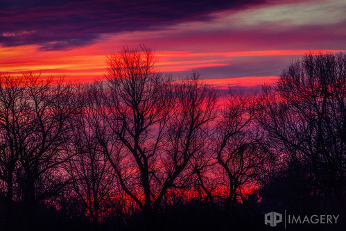 kentucky trees sky sunrise landscape sunset midwest purple usa