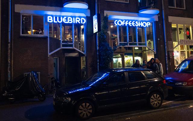 Bluebird Coffeeshop Cannabis