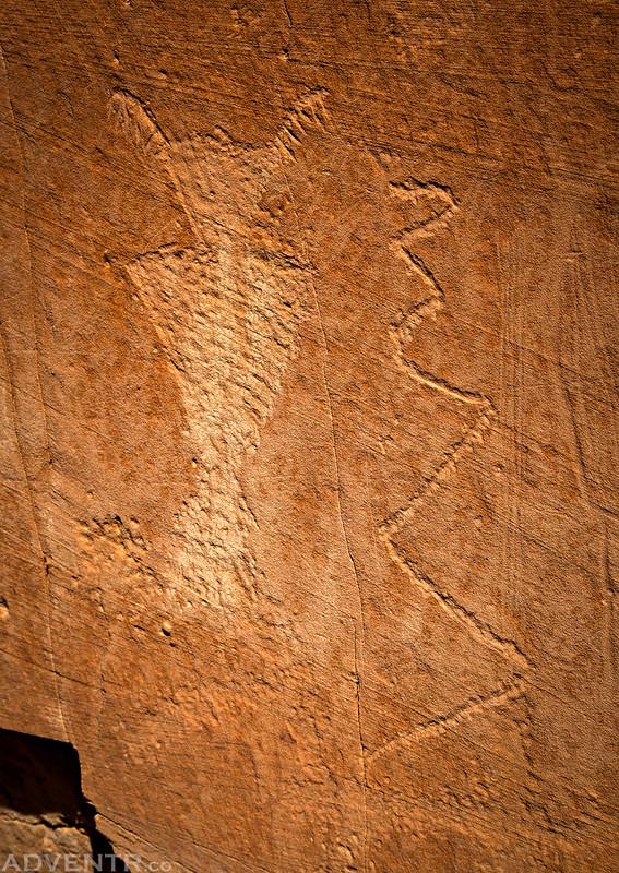 Roost Petroglyphs