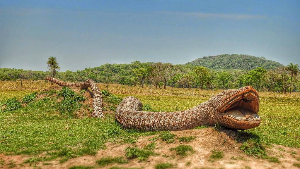 BONITO - Snake