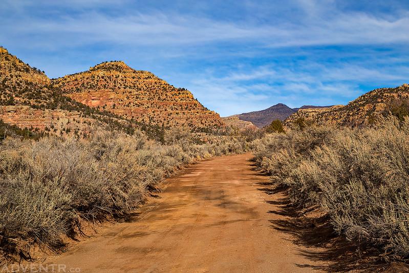 Sage-Lined Road