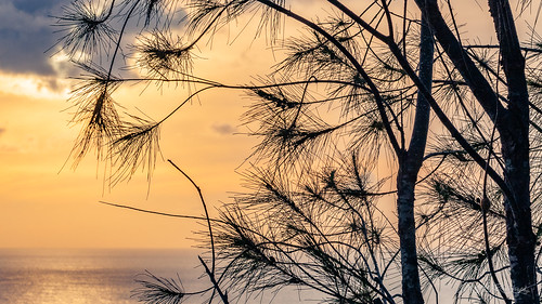 america clouds famousplace guam khkvisitjune2008 micronesia oceania pacificocean pacificsunset places sunset touristattraction traveldestination travelandtourism tree tumonbay twoloverspoint usa unitedstates water fbtimeline