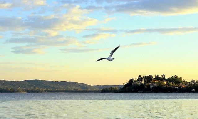 Lake Gavirate - Varese