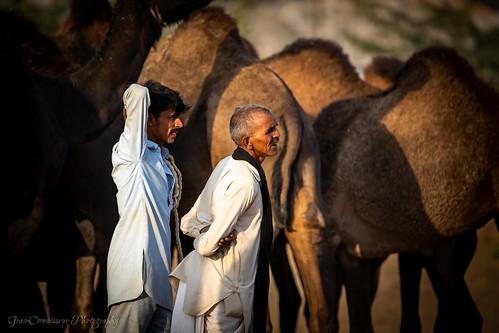 Merchants at the Pushkar Fair, Rajasthan,  India   by Catherine Gidzinska and Simon Gidzinski