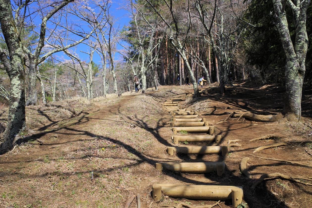 新倉山浅間公園から登山道へ