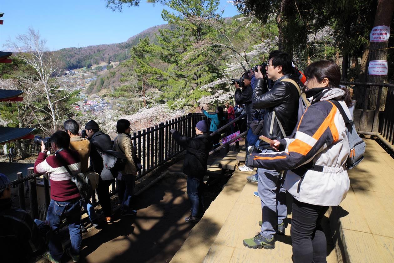 新倉山浅間公園 五重塔展望台