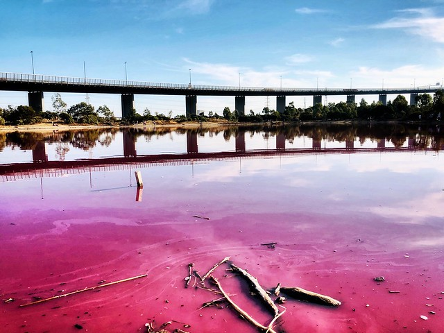 Passionate Pink. The Pink Lake in Melbourne, Australia - a purely natural phenomenon of an algae bloom.